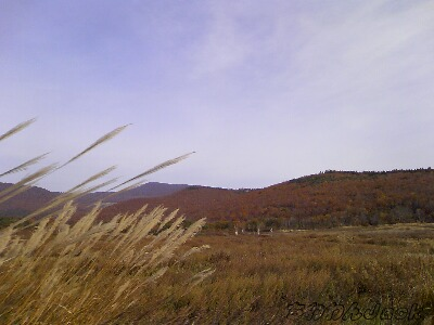 2010-10-24-2.jpg