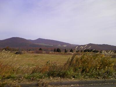 2010-10-24.jpg