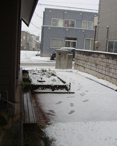 2010-11-29-2.jpg