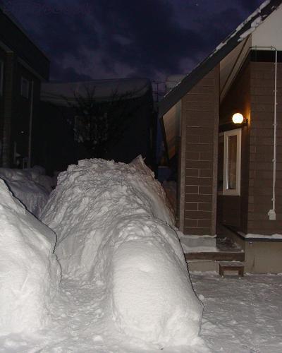 2011-01-14.jpg