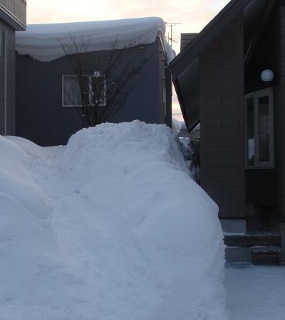 2011-01-24-4.jpg