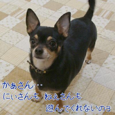 DSC01869-2.jpg