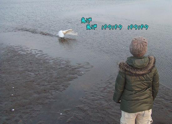 091223-sanpo3.jpg