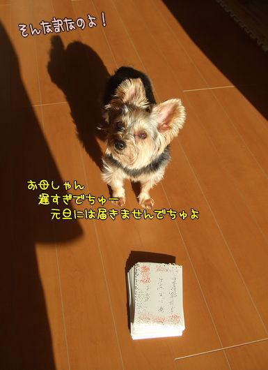 091229-card2.jpg