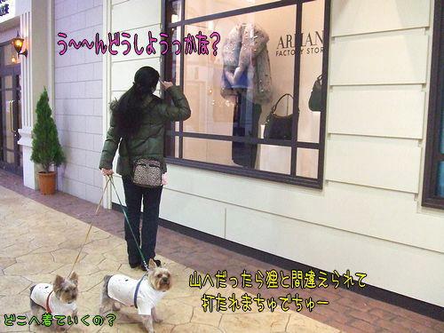 100118-shopping6.jpg