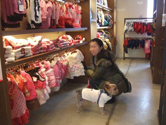 100118-shopping8.jpg