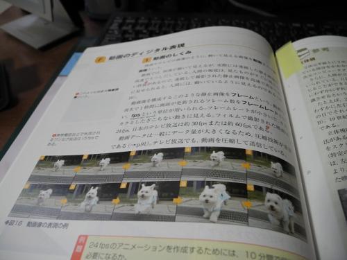 s-DSCN1982.jpg