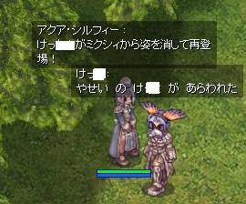2009_11_11_1.jpg