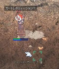 2009_12_12_11.jpg