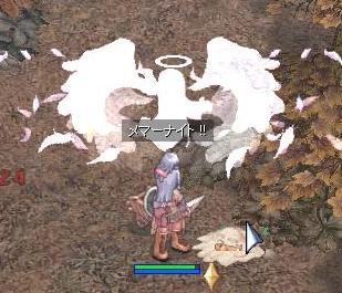 2009_12_15_2.jpg