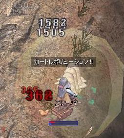 2009_12_16_3.jpg