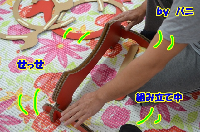 DSC_4576_20120229010608.jpg