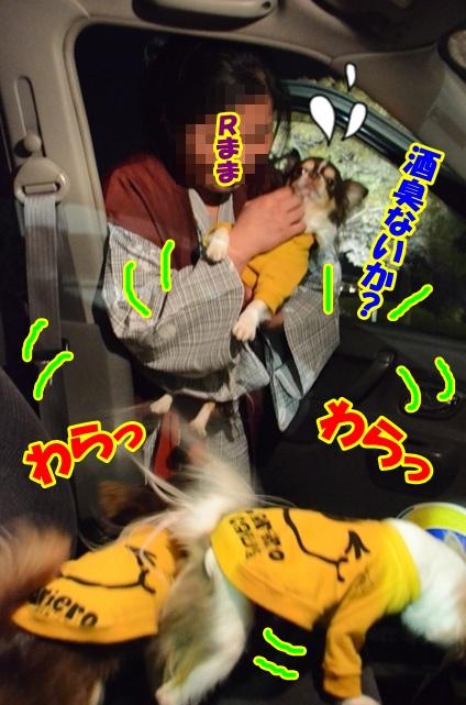 DSC_5215.jpg