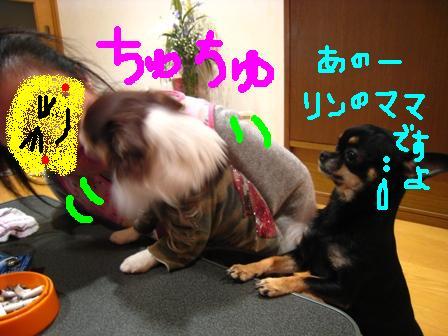 IMG_2804.jpg