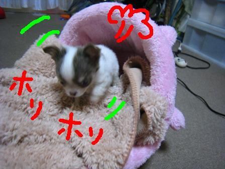 IMG_3588.jpg