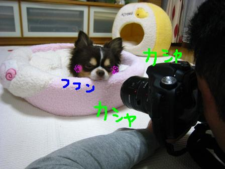 IMG_4240.jpg