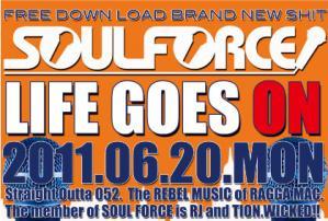 soul_force_2.jpg