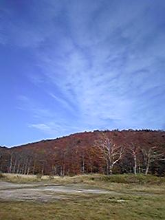 image580.jpg