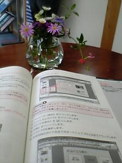 06-07-01_17-23.jpg