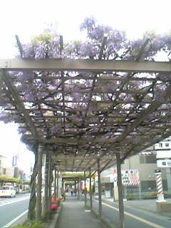 06-04-29_17-47.jpg
