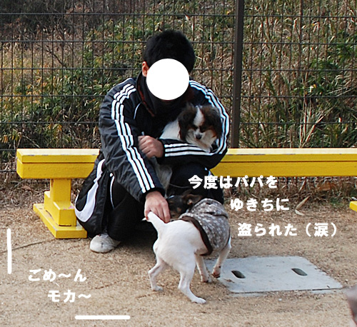 DSC_9644.jpg