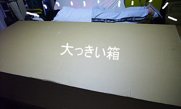 P1080850.jpg