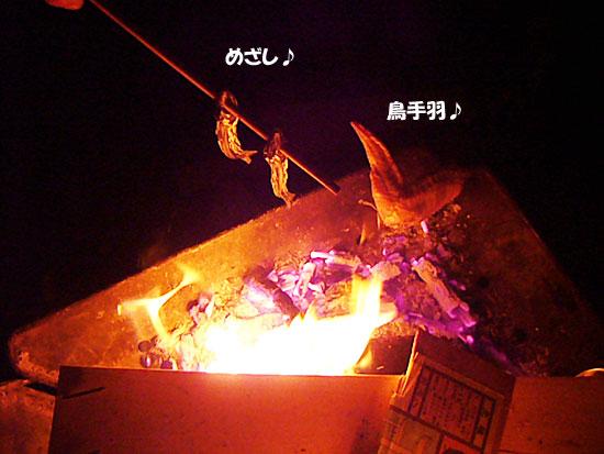P1130380.jpg