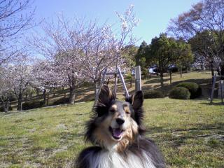 2011-04-07_0002.jpg