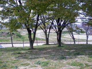 2011-04-15_0000.jpg