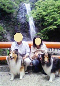 201105021231000-t.jpg