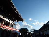 2010-01-010