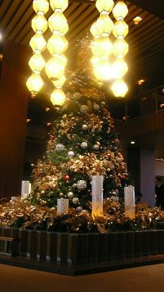 オオクラのクリスマスツリー