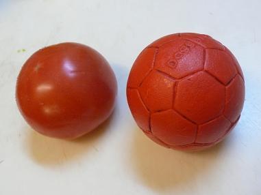 ピーピーボールとトマト