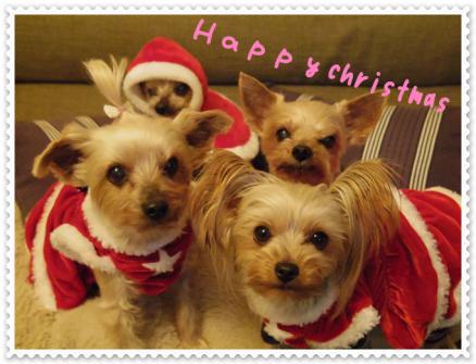 2012クリスマス3