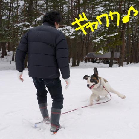 バーディ♪雪の大山004