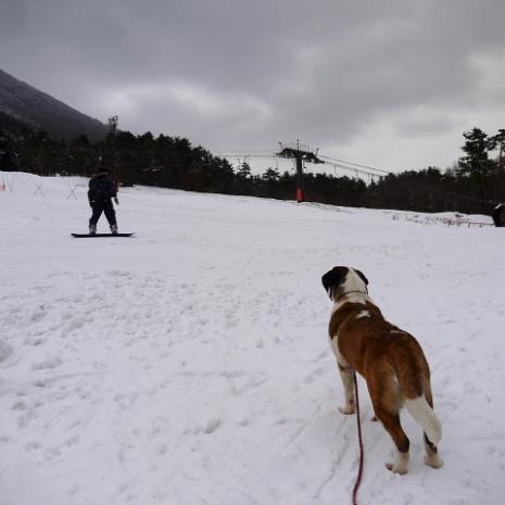 バーディ♪雪の大山08