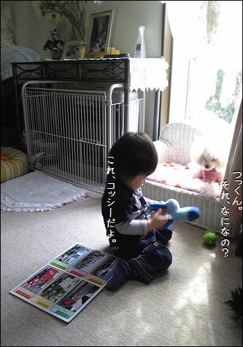 Image5323a_20110326233001.jpg