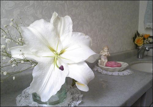 Image5466a.jpg