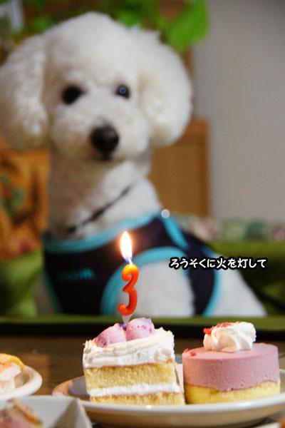 Birthday♪4