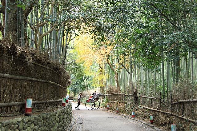 IMG_0373嵐山