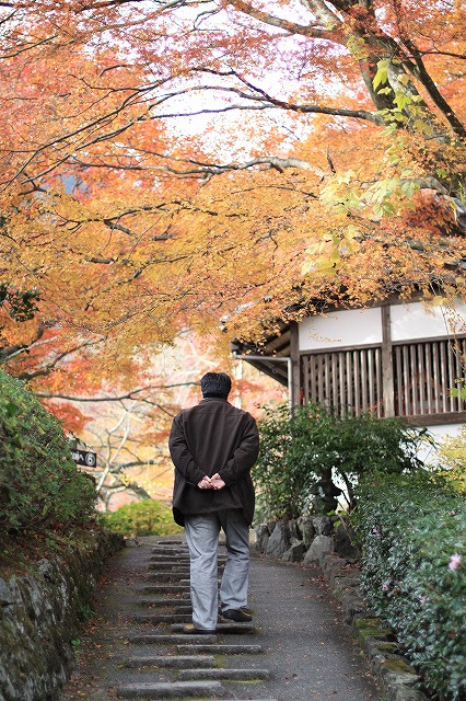 IMG_7559善峯寺