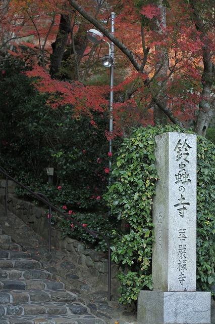 IMG_7651鈴虫寺
