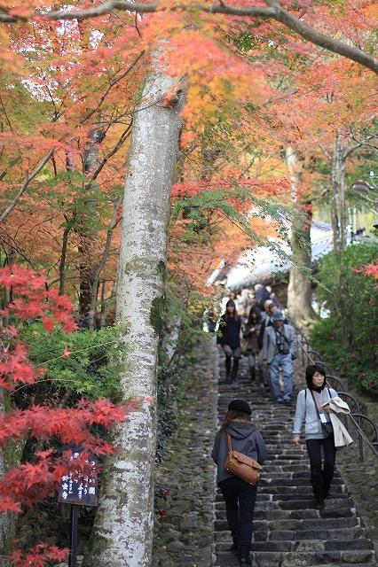 IMG_7654鈴虫寺