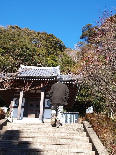 132日本寺