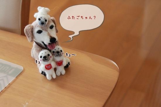 IMG_2684_R.jpg
