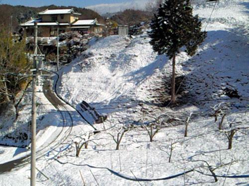 yuki021201.jpg