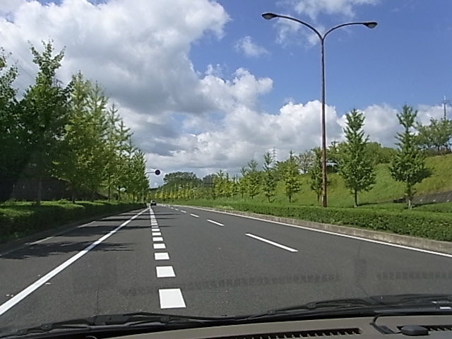 RIMG5602.jpg