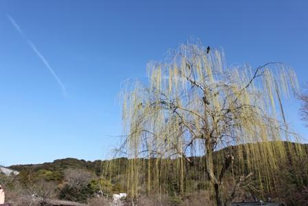 快晴丸山公園