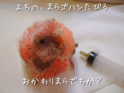 17_20130323164231.jpg