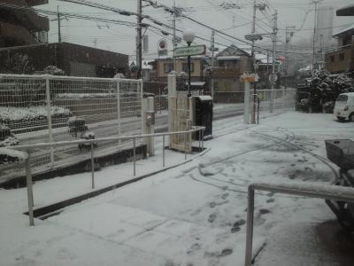 雪 小さい